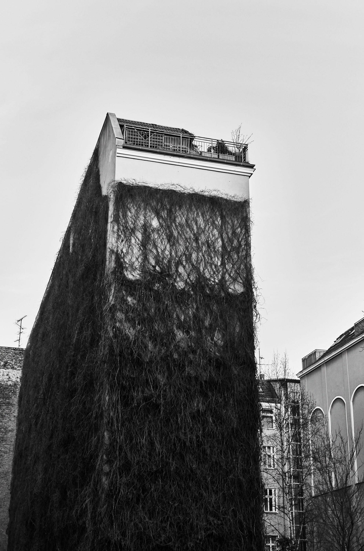 Berlin (Die Decke über Berlin)